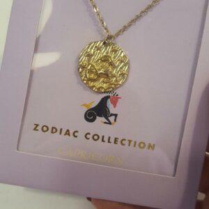 Zodiac Ketting - Steenbok Goud