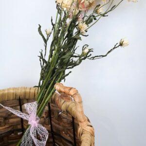 Doorgbloemen Helichrisul Wit