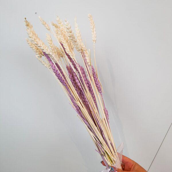 Droogboeket tarwe gebleekt & lila