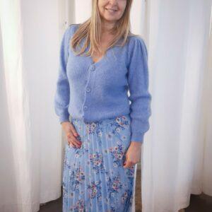 Skirt Plead Blue Flowers